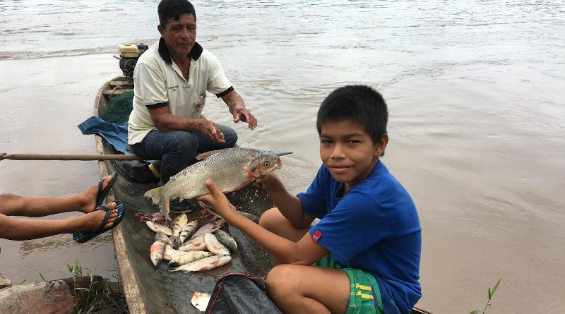 Landing a catch along the Ucayali River in the Loreto department of the Peruvian Amazon. The boy is holding a boquichico, a commonly consumed species. (All photos: Sebastian Heilpern) CREDIT Sebastian Heilpern