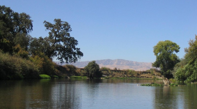 This image shows the riparian community woodlands along the lower Tuolumne River near Merced, California. The dry grassland in the background indicates the semi-arid conditions and drought environment. CREDIT John Stella, ESF