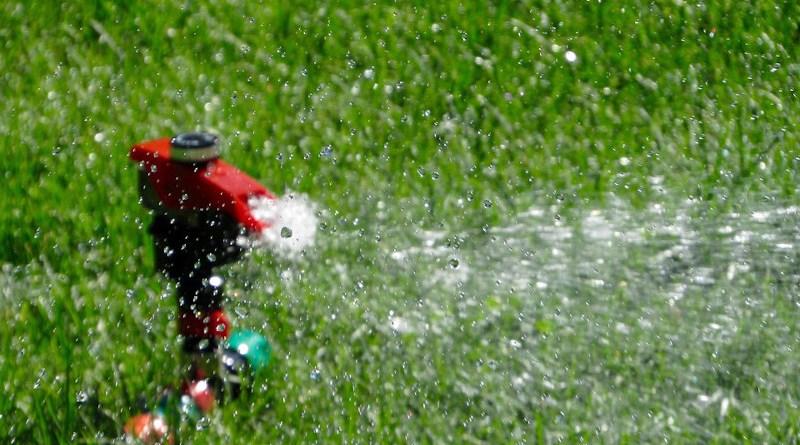 Lawn Grass Sprinkler Watering Grass Turf Landscape Water