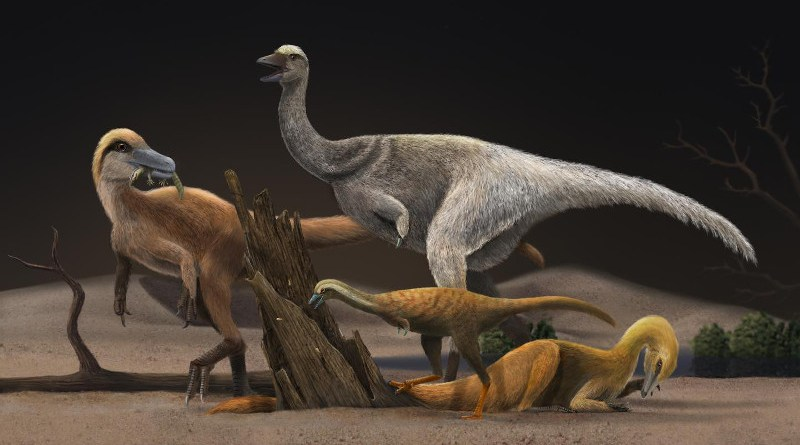 Artistic reconstruction of four representative alvarezsauroids, Haplocheirus sollers (left), Patagonykus puertai (upper middle), Linhenykus monodactylus (lower middle) and Bannykus wulatensis (lower right), illustrating the body size and dieting change in alvarezsauroid dinosaurs CREDIT Zhixin Han/ https://www.artstation.com/xinyanjun