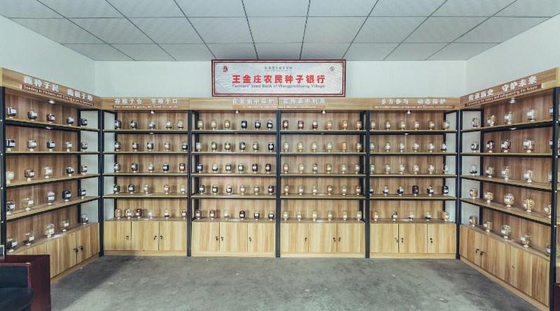 Wangjinzhuang village's Community Seedbank. CREDIT Qiubi