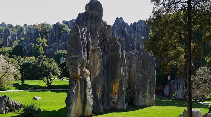 China Stones Kunming Stone Forest Landscape Figure