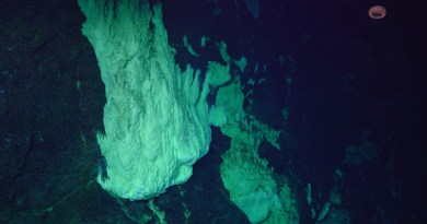 The Lost City hydrothermal vents sit on top of Atlantis Massif, a 2.5-mile-high mountain deep in the Atlantic Ocean. The Lost City and the crustal rock that makes up the mountain are host to a complex ecosystem of microbial life. Now, researchers with Bigelow Laboratory for Ocean Sciences have pioneered a method that could open new windows into our understanding of this life and how organisms live in extreme environments. CREDIT: Susan Lang, U. of S.C. / NSF / ROV Jason / 2018 © WHOI