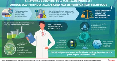Using a new strain of algae, scientists have developed an eco-friendly way to purify wastewater CREDIT: Shoolini University
