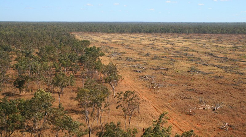 Aerial shot of deforestation in Daly River, Northern Territory in 2008. CREDIT: Julian Murphy/WWF-Aus