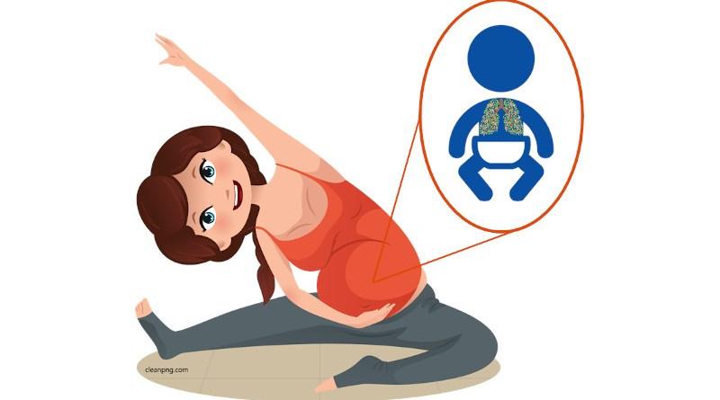 Physical activity during pregnancy is linked to lung function in offspring CREDIT: Dr Hrefna Katrin Gudmundsdottir