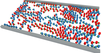 Simulation of a pedestrian counterflow (red and blue particles, with green arrows denoting instantaneous velocity) confined within a hallway (gray boundary), under conditions of weak social distancing. CREDIT: Gerald J. Wang