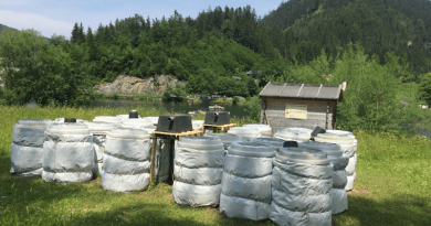"""Controlled outdoor environments known as """"mesocosms"""" were used to study climate change impacts on nutrition and toxicity on the aquatic food web. Photo credit: Pianpian Wu"""