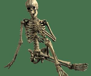 On vient de m'apprendre que l'on vient de changer le nom usuel de l'os «tibia» et peut-être bien «péroné» par la même occasion !