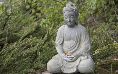 Après avoir lu Sapiens de Yuval Noah Harari, j'ai appris les fondements de la pensée bouddhiste et cela a éveillé ma curiosité…