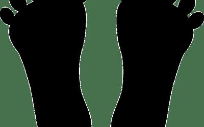 D'où vient le mot pointure ? Quelle est l'origine de ce mot lié à la taille de nos pieds ?