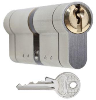 Euro Protector Locks