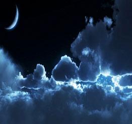 Darknights