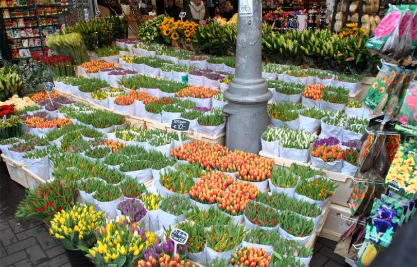 Fashion Oomph! - Flower Market - Amsterdam