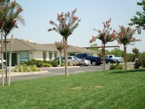 photo of the same location five years later - now a small business park.