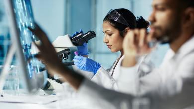 Photo of Estudar medicina em Portugal: guia completo para brasileiros