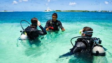 Photo of Seguro viagem para mergulho: quanto custa e onde contratar