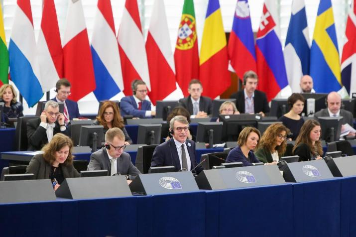 January plenary with national flags