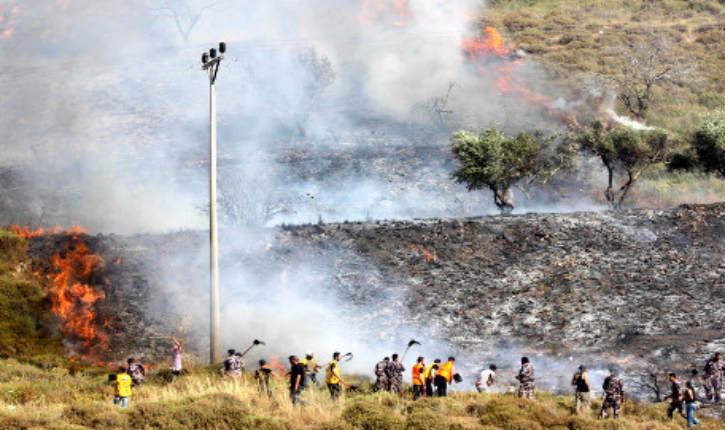 Flagrant délit: des palestiniens brûlent une oliveraie et se font passer pour « juifs »