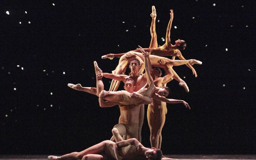 Mein Ballett, dein Ballett, unser Ballett