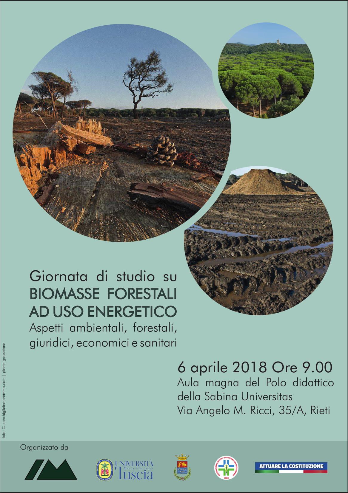 L'intervento di European Consumers alla Giornata di studio su Biomasse forestali ad uso energetico