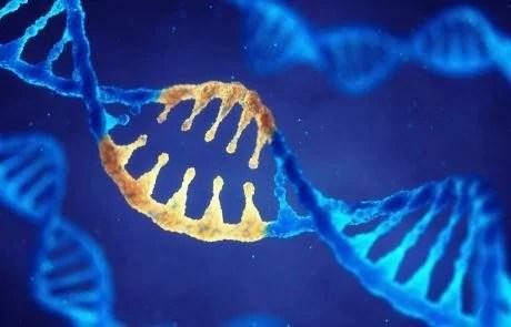 Genetics study suggesting CRISPR babies might die younger is retracted