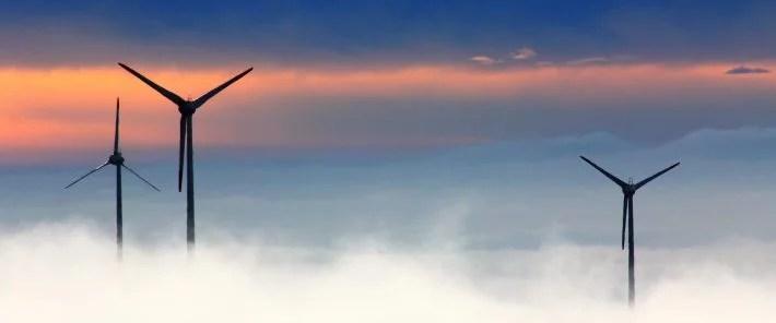 L'ONG Sherpa alerte sur le coût écologique des « énergies renouvelables »