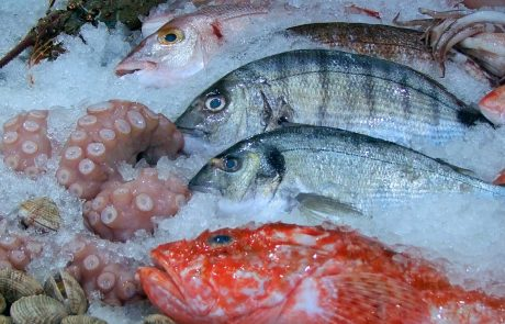 EU is largest single market for fish products