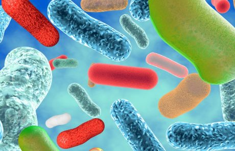Want to know someone's true age? Just look at their microbiome