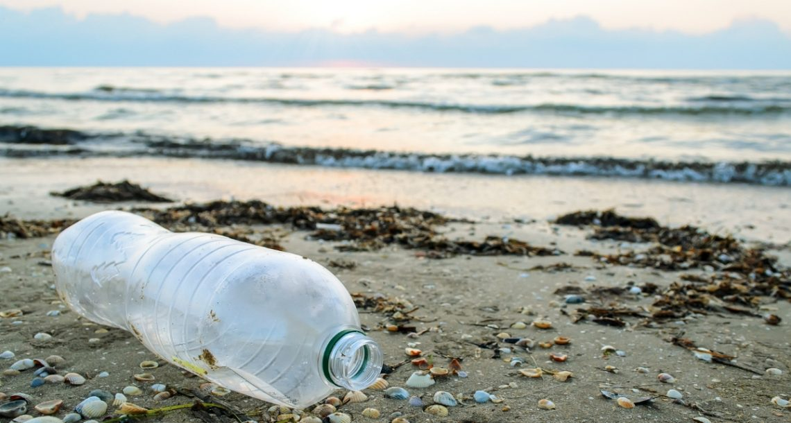 The increase in ocean plastic pollution documented over six decades