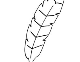 Imagenes De Indios Para Dibujar On Log Wall