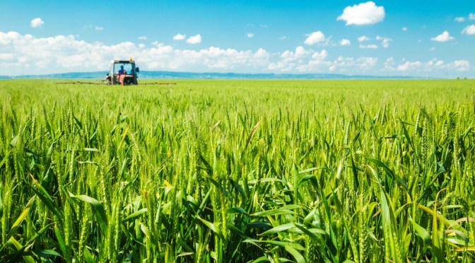 Biotechs speak up on GM crops