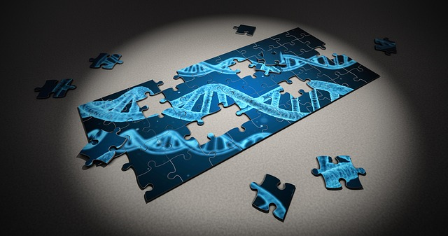 Puzzle DNA pieces genetics