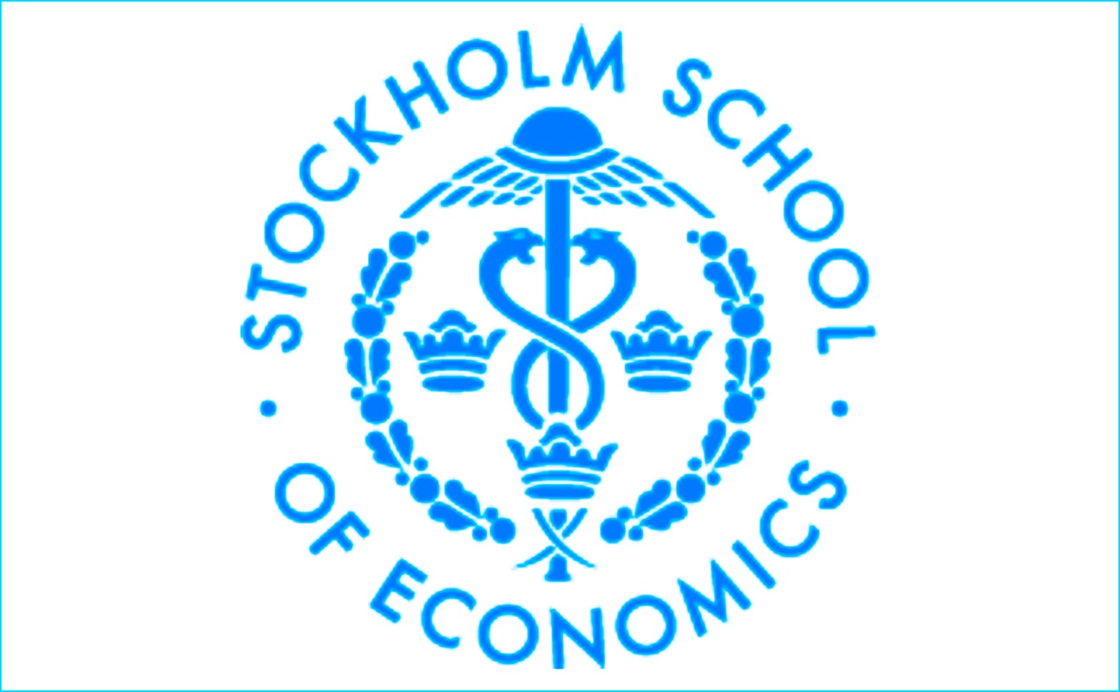 Gerhard Fasol at Stockholm School of Economics