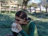 Angela panino