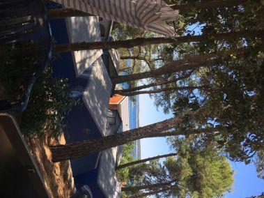 Blick aufs Meer - Camp
