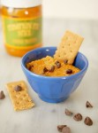 Pumpkin spice chocolate chip hummus dip