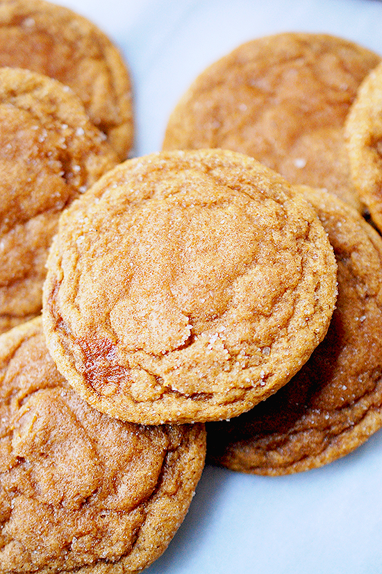 gingerbread snickerdoodle
