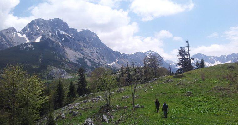 Maglić_marking_via_dinarica_white_trail_suha_prijevor_sutjeska_bosna_i_hercegovina