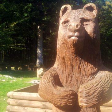 Mašun_bear_hiking_via_dinarica_slovenia