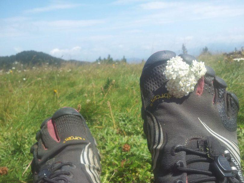 BiH_Via_Dinarica_catching_flowers_Čvrsnica_FiveFingers