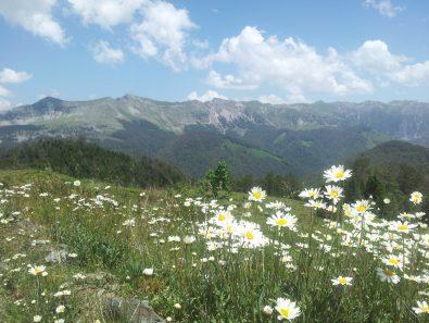 montenegro_komovi_np_Via_Dinarica