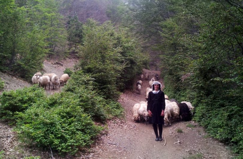 hiking_via_dinarica_albania_balkans_white_trail