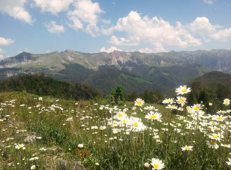 Hiking Via Dinarica White Trail Mountains of Montenegro | Crna Gora