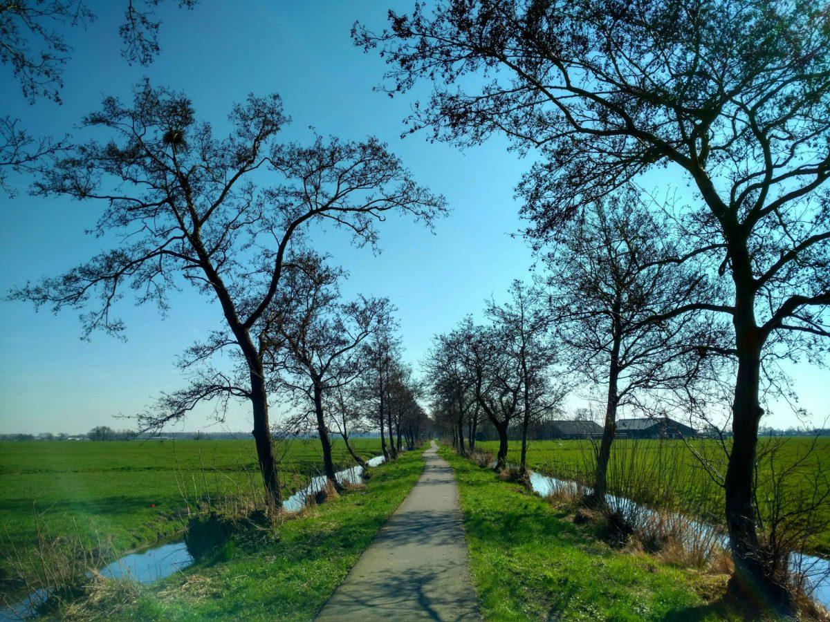 Sloteb_bomen_pelgrimspad_nederland