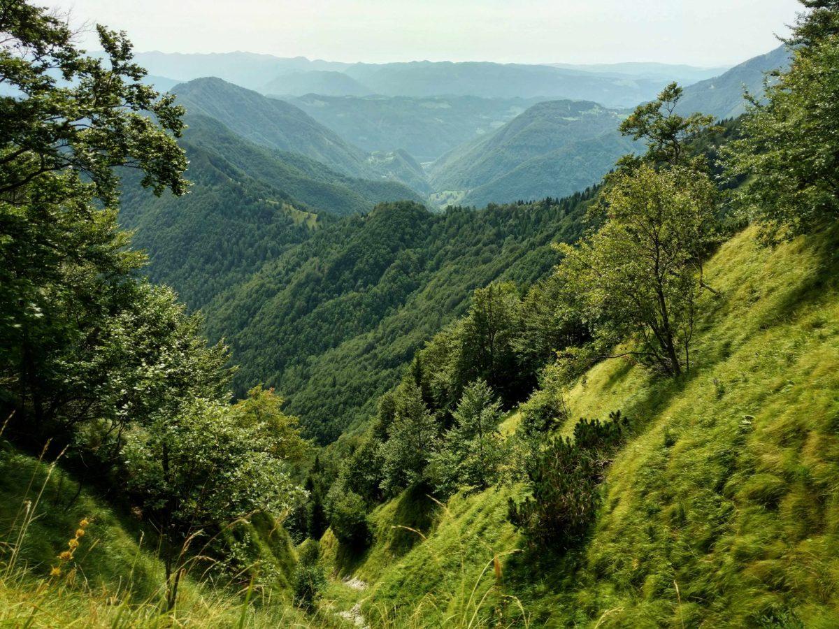 Groen_balkonuitzicht_E7_slovenië