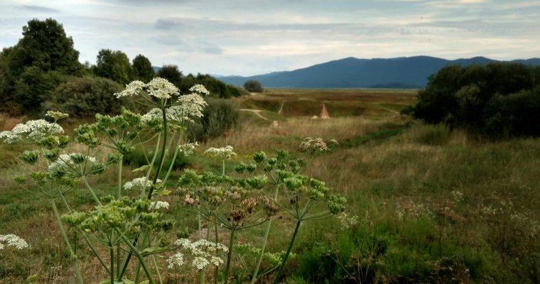 Mijn Via Dinarica door Slovenië | Verslag van mijn route