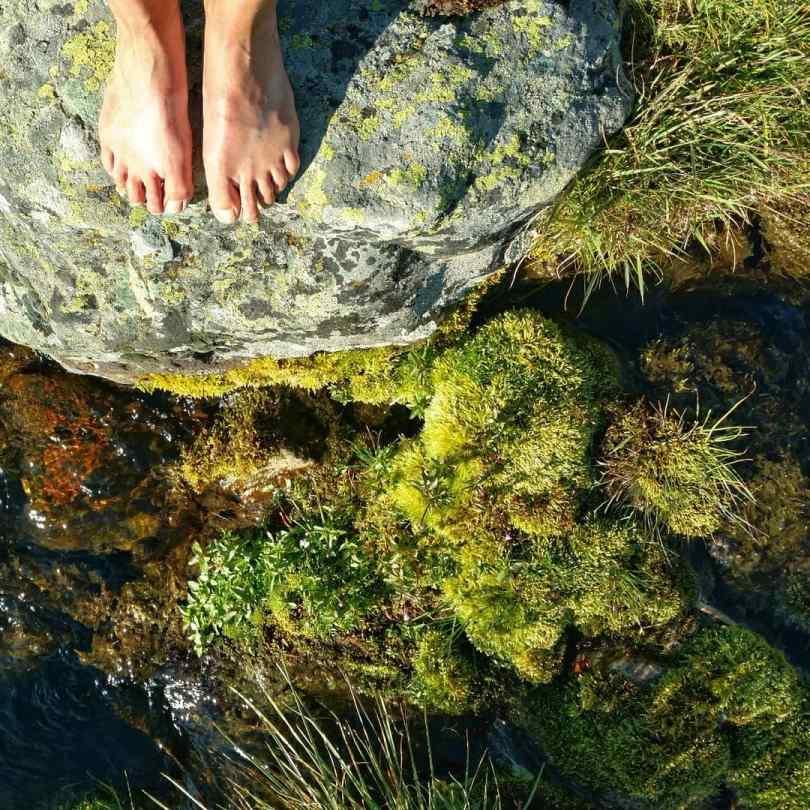 Trekbarefoot