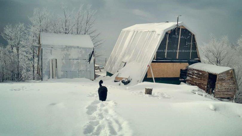Mountain hut Jure Franko, TREBEVIĆ above Sarajevo   SNOW, SNOW, SNOW