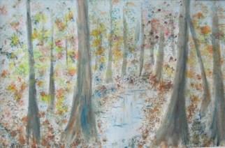 Tobelbach im Herbst, 11.2015 Aquarell, mit Passepartout und Rahmen 50 x 70c cm